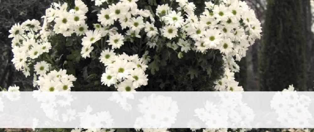 """La AVT organiza su tradicional acto en el Bosque del Recuerdo con motivo del """"11M: Día Europeo de las Víctimas del Terrorismo"""""""